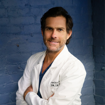 Doctor Francisco